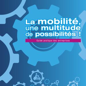 La mobilité, une multitude de possibilités ! Guide pratique des Entreprises (numérique)