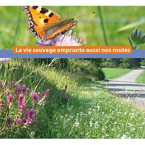 La vie sauvage emprunte aussi nos routes [2021] (numérique)