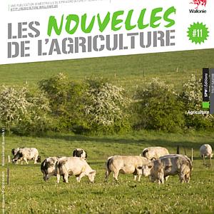 Les Nouvelles de l'Agriculture № 11. Focus sur la viande bovine (numérique)